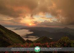 Міжнародний конкурс «Вікі любить Землю» визначився з найкращим фото Закарпаття
